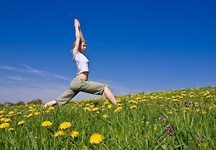 Miniküche Mit Kühlschrank Yoga : Yoga kurse und ayurveda masssage in freiburg